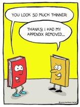appendixcoloredshrunk